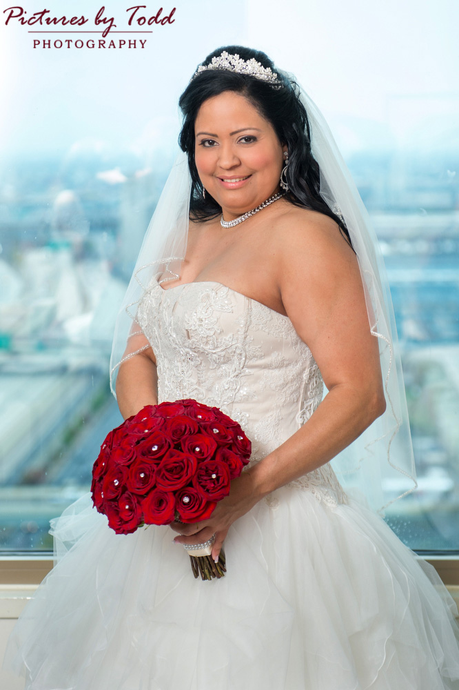 Fairytale-Bride-Wedding-Dress
