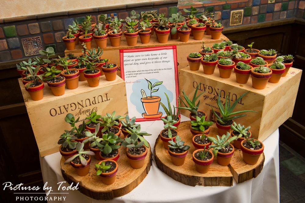 Wedding-Favors-Plants-Great-Ideas