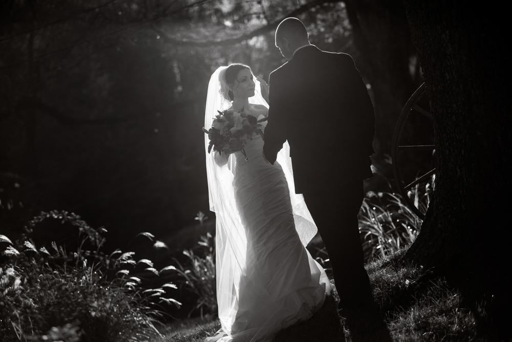 012_Holly-Hedge-Estate-New-Hope-Wedding-Photos
