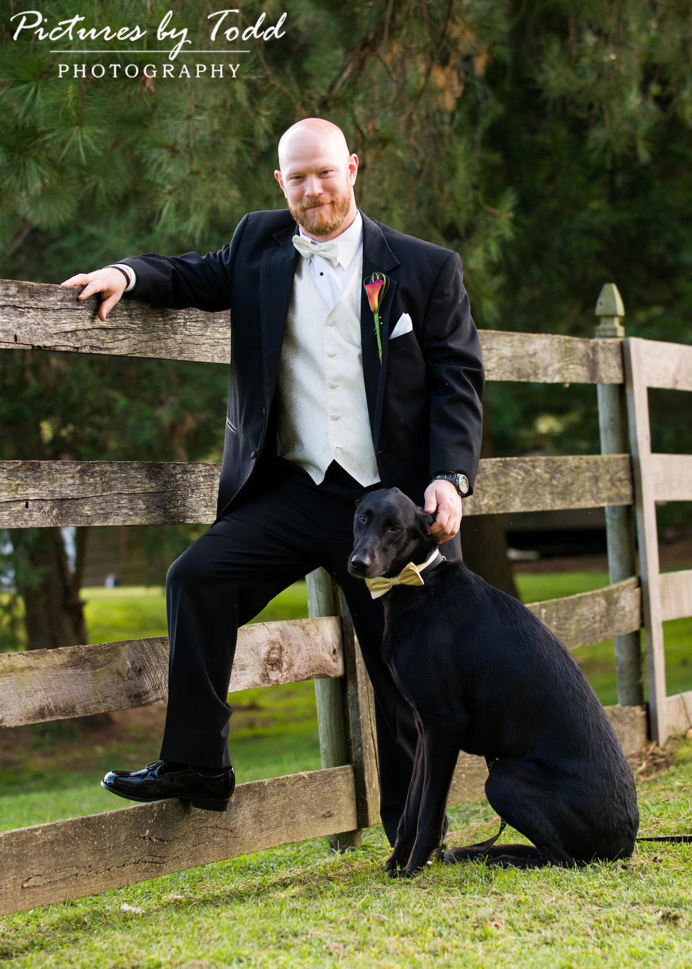 Dogs-at-Your-Weddings-Portraits