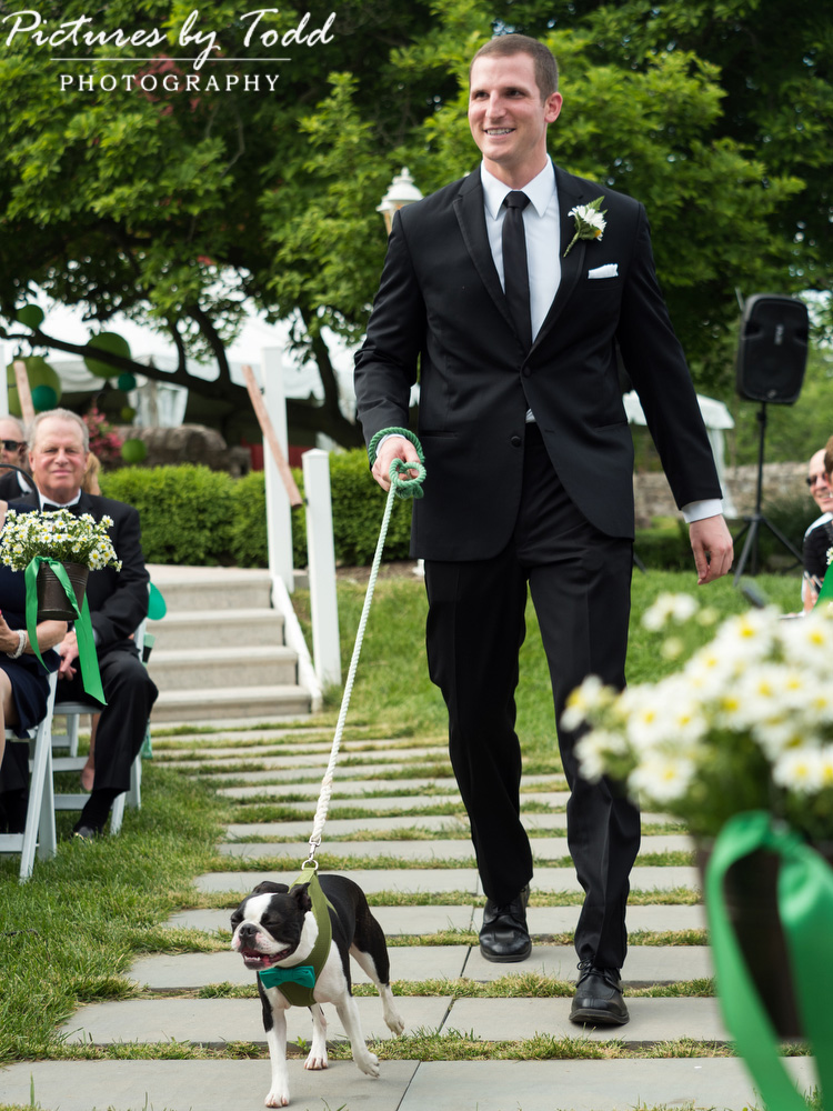 Manor-House-Of-Prophecy-Creek-Dogs-At-Wedding-Ideas
