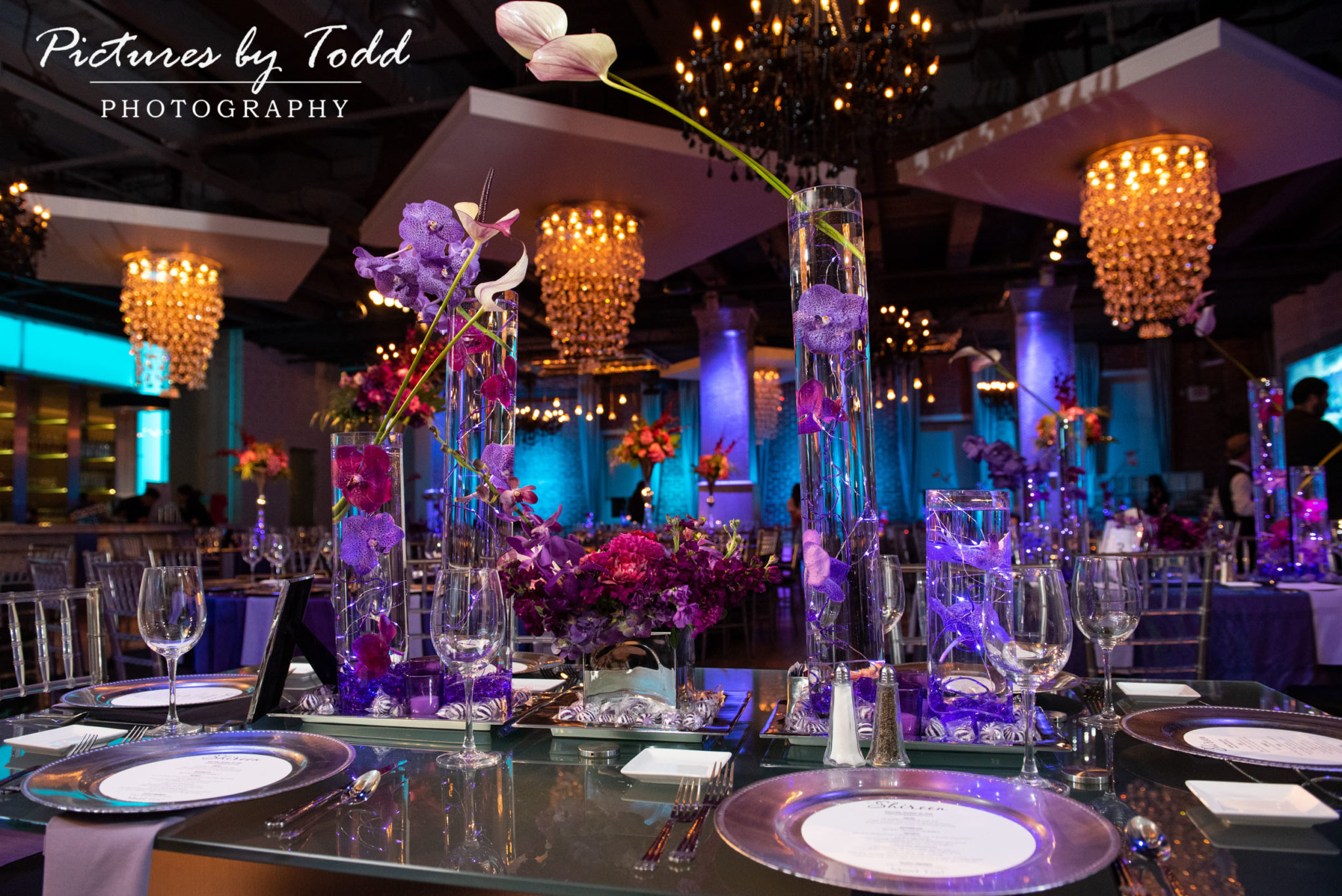 Pictures By Todd Photography Shireen S Bat Mitzvah